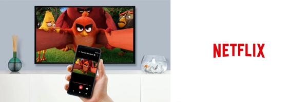 Ver Netflix con HDMI